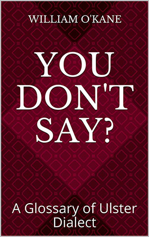You Don't Say?: A Glossary of Ulster Dialect